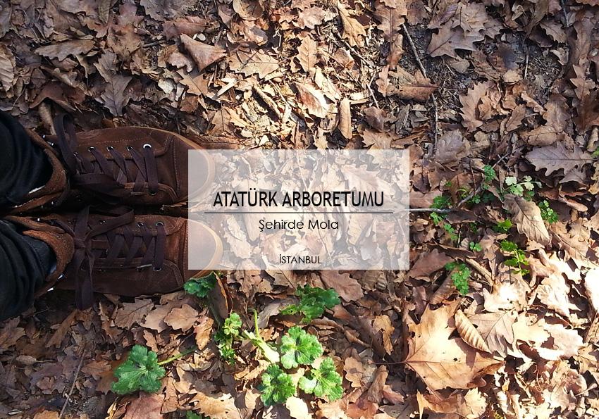 sehirde_mola_atatürk_arboretumu