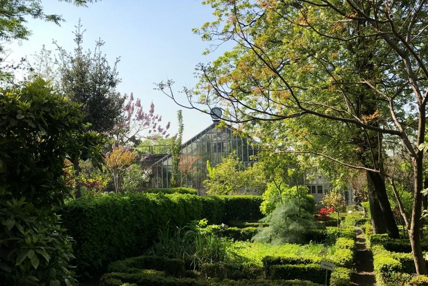alfred_heilbronn_botanik_bahçesi