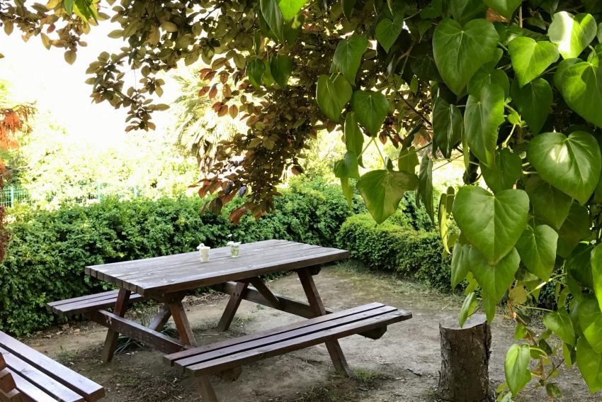 alfred_heilbronn_botanik_bahçesi_istanbul_universiyesi
